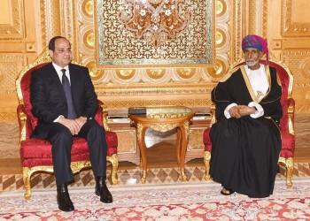 وزير الخارجية العماني: مصر هي عكاز الأمة العربية