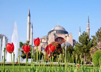 9 ملايين وردة مبيعات متوقعة لإسطنبول في «عيد الحب»