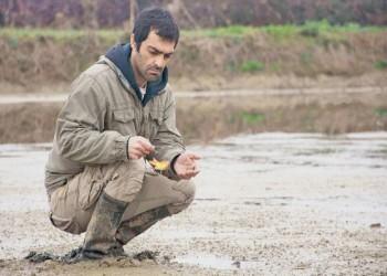 فيلم «رجل نزيه».. الفن يواجه الفساد في إيران