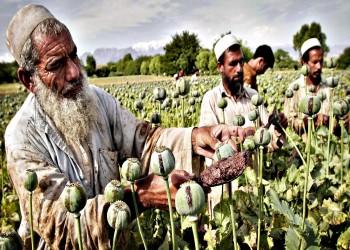 6.6 مليارات دولار قيمة الأفيون في أفغانستان العام الماضي