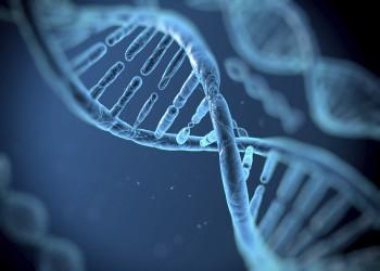 الجينات.. المتهم الحقيقي وراء الإصابة بالبدانة