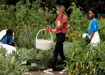 «ميلانيا ترامب» تزرع الفلفل والبامية بحديقة البيت الأبيض (صور)