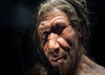 تحليل وراثي لإنسان «نيانديرتال»: نسبه يخلو من «سفاح قربى»