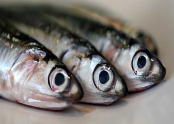 تناول المرأة للأسماك يؤخر دخولها لفترة انقطاع الطمث