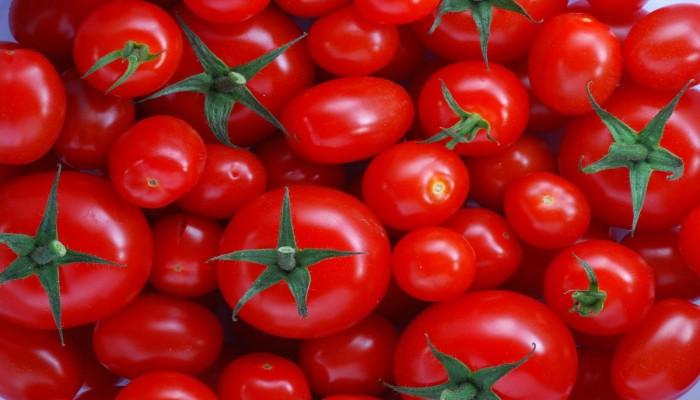 أزمة معجون الطماطم.. أثر العقوبات يظهر على اقتصاد إيران