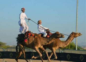 اليونسكو تدرج سباقات الخيول والهجن بعمان ضمن قائمتها للتراث