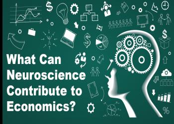 علم الأعصاب والاقتصاد