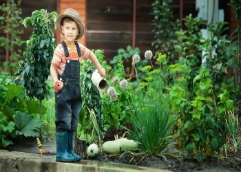 كيف تؤثر المساحات الخضراء في نشأة الأطفال وصحتهم النفسية؟
