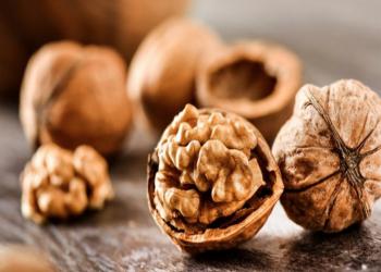 تناول الجوز يساعد في تعزيز وظائف الدماغ خلال فترة الشيخوخة