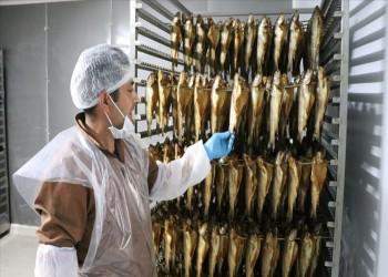 السمك التركي المدخن يغزو موائد شرق آسيا وأوروبا