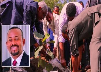 إثيوبيا تستهدف زراعة 200 مليون شتلة في يوم واحد