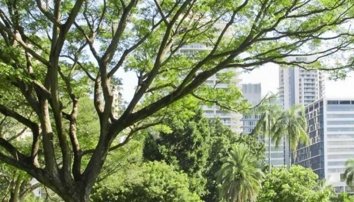 خطة لحجب أشعة الشمس لمواجهة تأثيرات المناخ