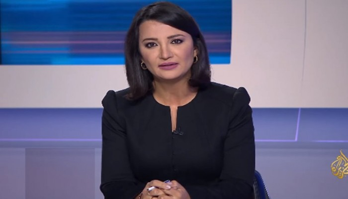 مذيعة بالجزيرة ترد على قرقاش: يؤيد إعلام تقبيل الأحذية