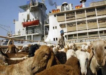 السعودية تحتجز شحنة ماشية سودانية.. وخسائر بالملايين للمصدرين
