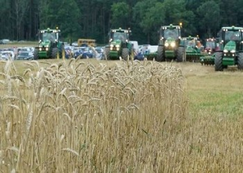السعودية: شراء 10% من احتياجات القمح من شركات وطنية بالخارج