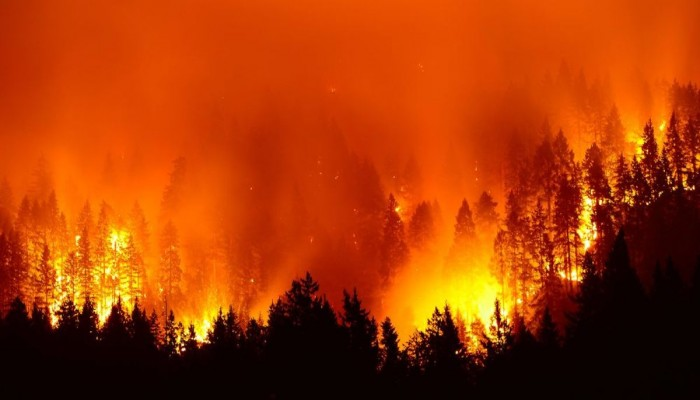 """""""بيتنا يحترق"""""""