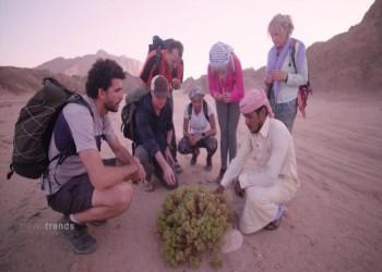 مجلة تايم تضع 4 وجهات عربية ضمن أفضل 100 بالعالم (صور)