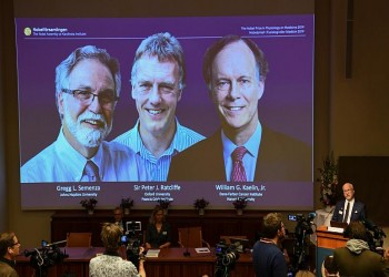 تتويج كيلين واتكليف وسيمنزا بجائزة نوبل للطب لعام 2019