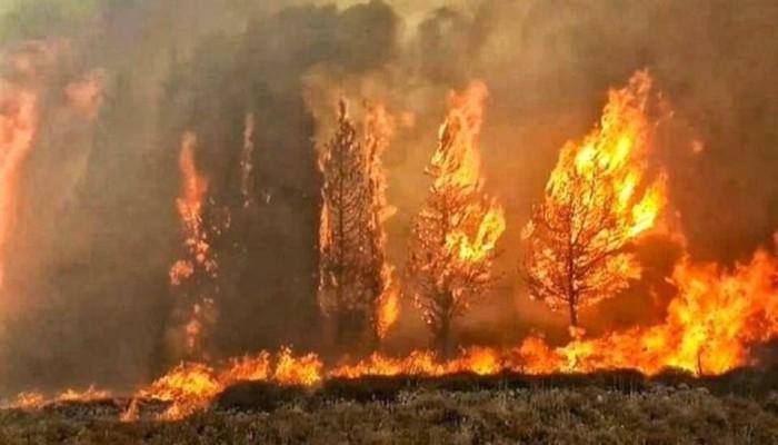 لبنان.. مؤذن يدعو مسيحيين للاحتماء بالمسجد من الحرائق (فيديو)