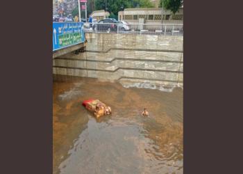 مصر بتغرق.. سخرية وغضب وألم بمواقع التواصل بعد أمطار غزيرة