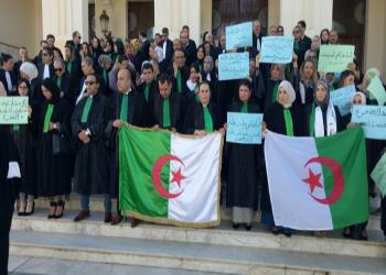 النقابة الجزائرية للقضاة تقرر الاستمرار في الإضراب