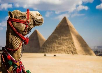 نشرة حكومية: تراجع أعداد السياح في مصر 1.8 مليون