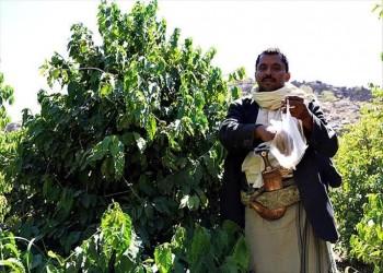 مسؤول حوثي: خسائر الزراعة في مناطقنا 20 مليار دولار