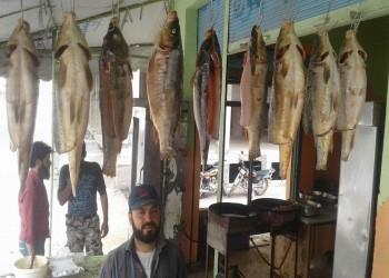 تدهور الثروة السمكية بسوريا.. ونصيب الفرد كجم واحد سنويا