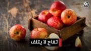 تفاح جديد بالأسواق لا يتلف لمدة عام كامل