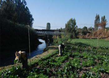 اكتمال 45% من مشروع التنمية الخضراء في إثيوبيا