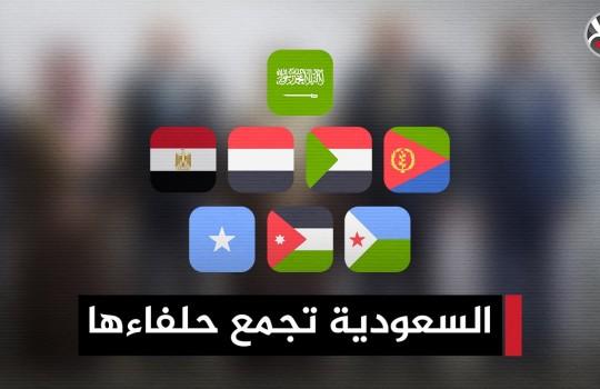 تحالف جديد مقره الرياض يضم دولا عربية إفريقية.. ما قصته؟