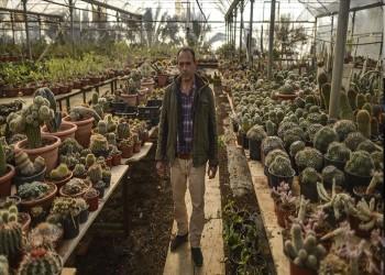 غابة الصبار..3 آلاف نبتة في حديقة نادرة بغزة