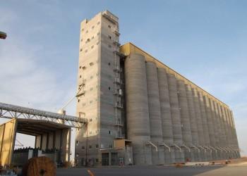 السعودية تطرح مناقصة لشراء نحو 900 ألف طن من الشعير