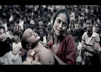 قضية الروهينغيا.. العودة للتضامن الإنساني