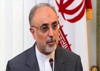 واشنطن تفرض عقوبات على الطاقة الذرية الإيرانية ورئيسها