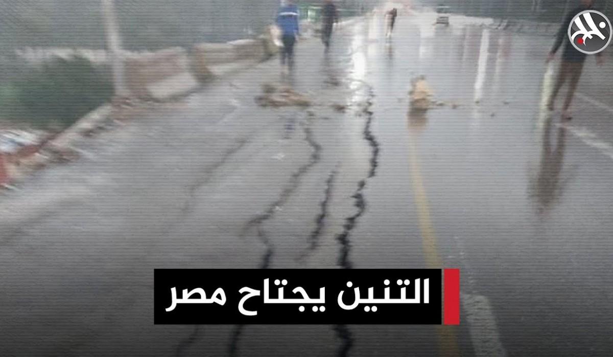 التنين يجتاح مصر