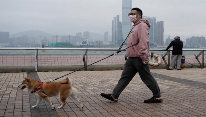 الصين.. لا إصابات محلية بكورونا لليوم السابع على التوالي