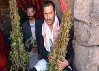 حضرموت اليمنية تقرر منع بيع القات وتعاطيه نهائيا