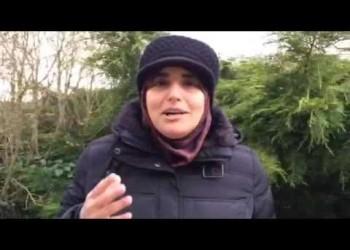 أمير سعودي يشمت في معارضة تقطعت بها السبل في لندن