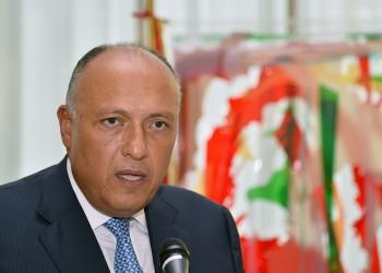 وزير الخارجية المصري: نعتزم إعادة سوريا إلى موقعها الطبيعي