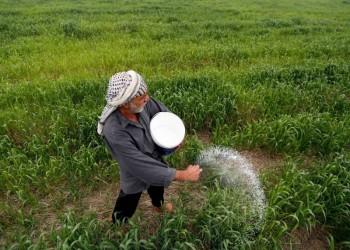 الزراعة أمل الاقتصاد العراقي في النجاة بعد انهيار سوق النفط