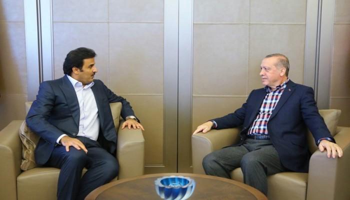 أردوغان وتميم يبحثان سبل التعاون في مكافحة كورونا