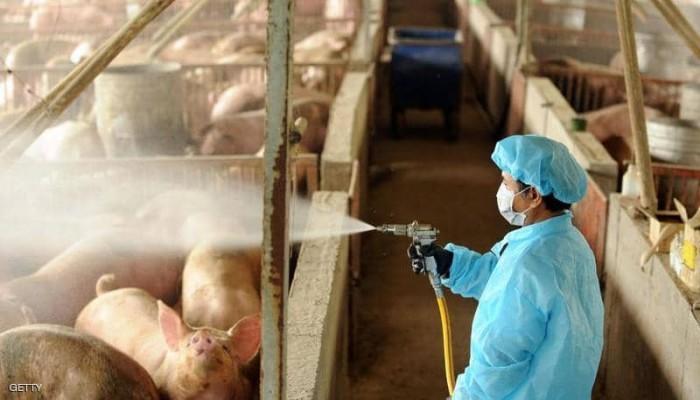 اكتشاف سلالة جديدة من الإنفلونزا بالصين قد تتحول لجائحة