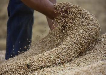 العراق يعلن تحقيقه الاكتفاء الذاتي المحلي من القمح