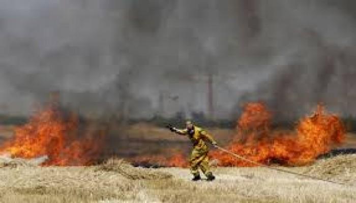 وقف البالونات الحارقة.. شرط إسرائيلي لمساعدة حماس في مواجهة كورونا
