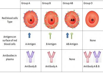 أصحاب فصيلة الدم O أقل عرضة للإصابة بكورونا