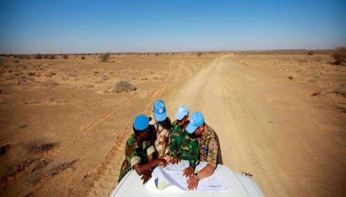 رغم التوافق الفكري.. إخوان الجزائر والمغرب مختلفان حول أزمة الصحراء