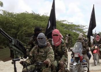 مذبحة لـ43 مزارعا شمال شرق نيجيريا على يد بوكو حرام