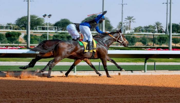 أمل فيصل.. أول سعودية تحصل على رخصة سباقات الخيل