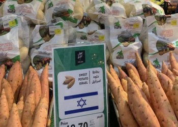منتجات المستوطنات الإسرائيلية تنطلق إلى الإمارات.. واستنكار فلسطيني